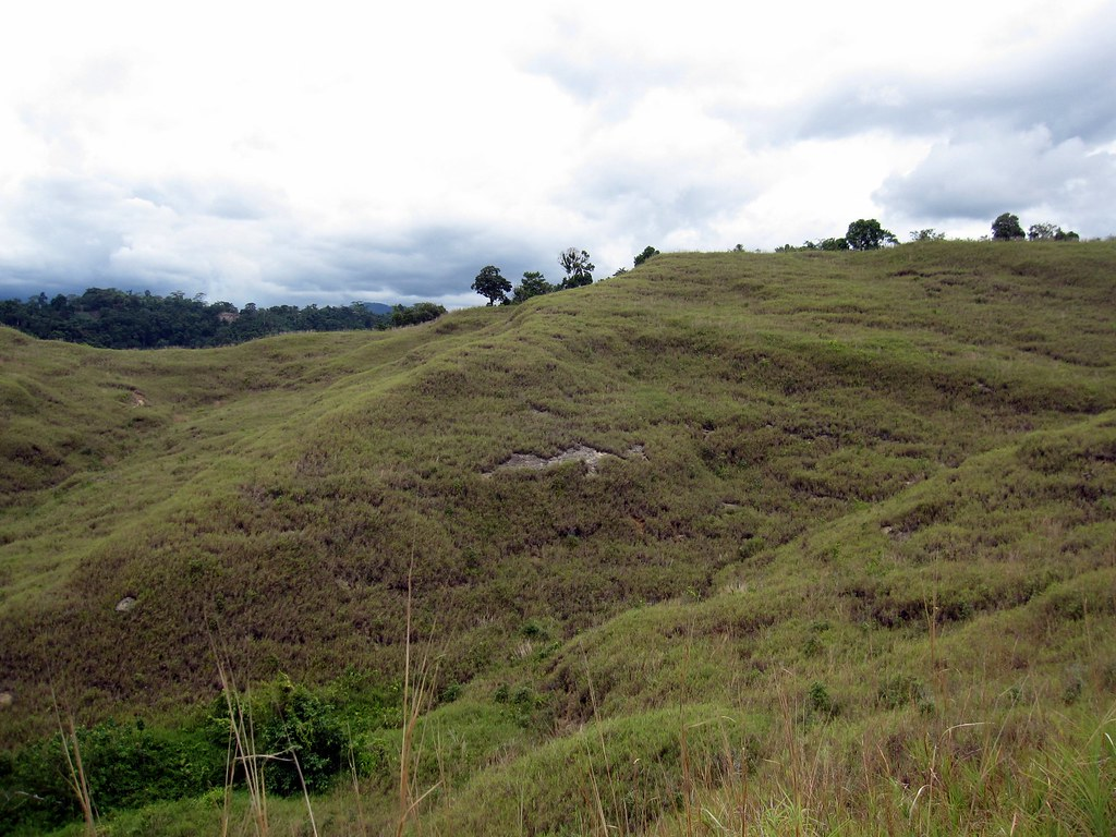 Solomon Islands Papua New Guinea 043 The Thin Red Line Rap Flickr