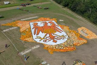 Kürbisse: Wappentier auf Brandenburg-Landkarte