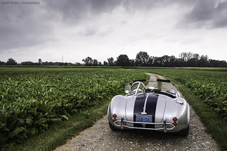 AC Cobra - on explore #132 | by gauvin,pictures