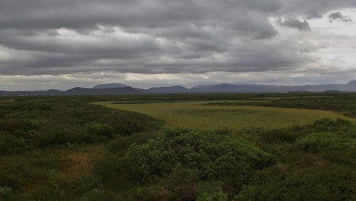 Neslandatangi Peninsula Nature Reserve at Lake Mývatn in North-East Iceland - July 2012 | by SaffyH