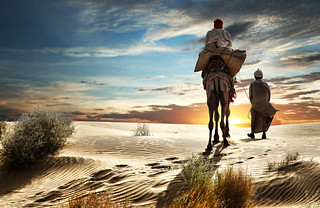 Into the Desert | by vladimir.servan