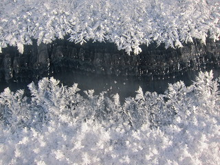 Frost flowers in the crack | by sandwichgirl