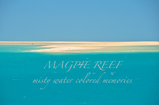 MAGPIE REEF | by Cruising, traveling & dive pics.