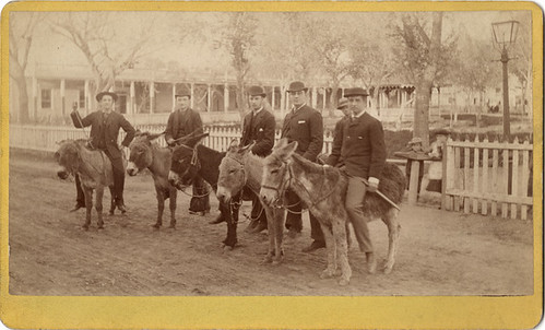 Cabinet Card of Five Men on Donkeys | by Photo_History - Here but not Happy