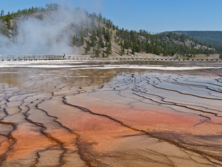 Grand Prismatic Spring, Yellowstone National Park, Wyoming | by annkelliott