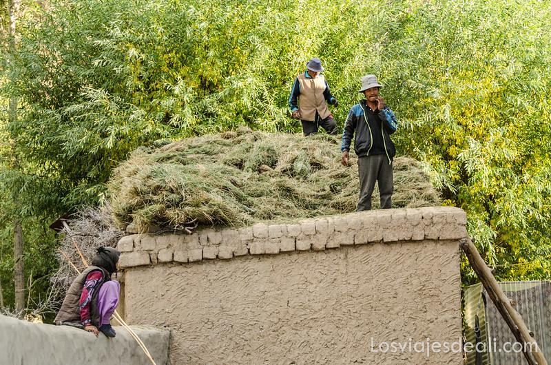 trekking cerca de Leh tareas agrícolas en Saboo