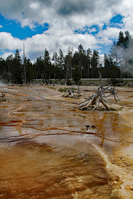 29653081856 a765868719 z Fountain Paint Pot: Yellowstone National Park