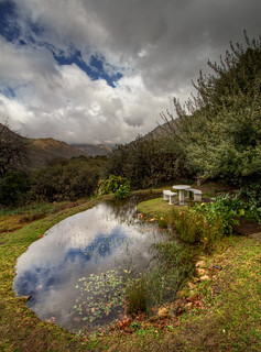 The Lookout Pond | by Ohan Smit