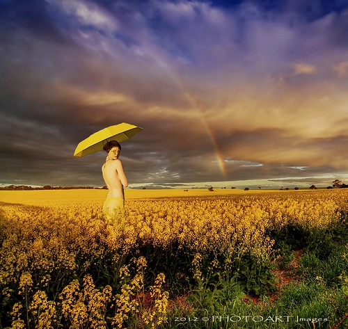 wicked yellow | by PhotoArt Images (mostly off)