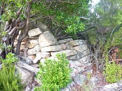 Les vestiges de la bergerie de Strascinella au début du chemin RD du  Castellucciu