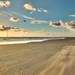 Shifting Sands on Drigg Beach (L29)