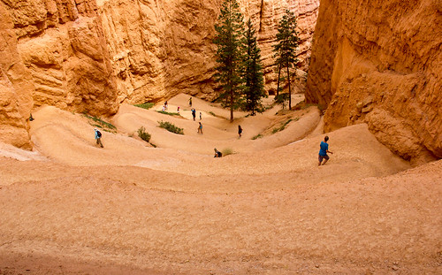 USA - Utah - Bryce Canyon | by World-wide-gifts.com