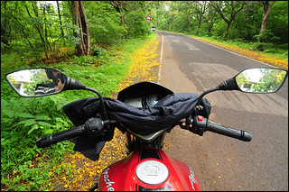 Slow down for nature | by ....Nishant Shah....