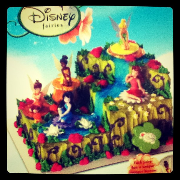 Holy Crap Disney Fairies Very Elaborate Birthday Cake You Flickr