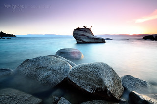 Bonsai Rock | by Gary Ngo | Photography
