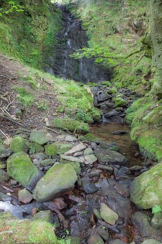 Parque Natural de #Gorbeia #DePaseoConLarri #Flickr - -7991
