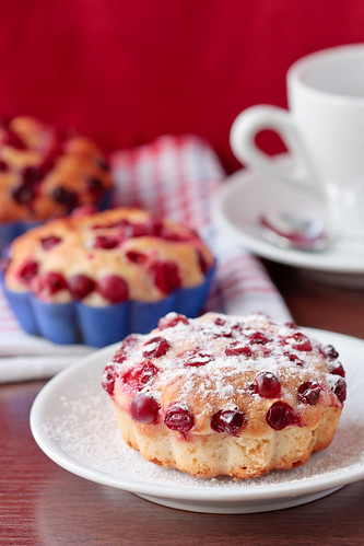 Cranberry muffin | by ZakariaSnow