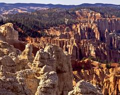 Bryce Canyon I