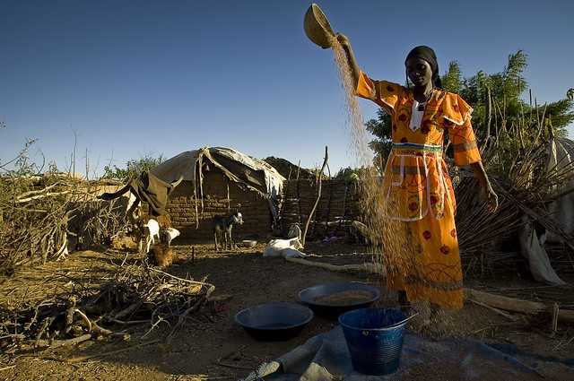 Explore and Understand Africa Through Her Food and Culture