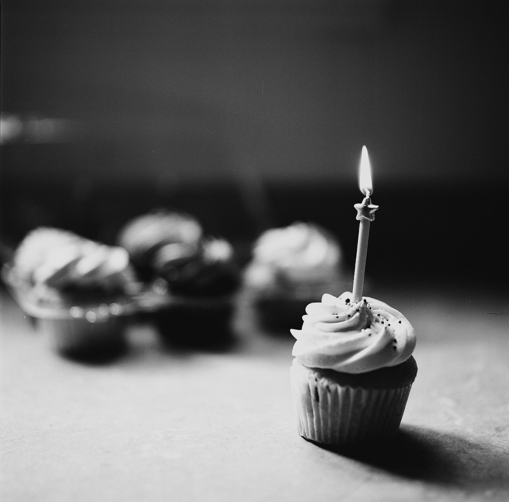 happy birthday blog its my blogs first birthday to