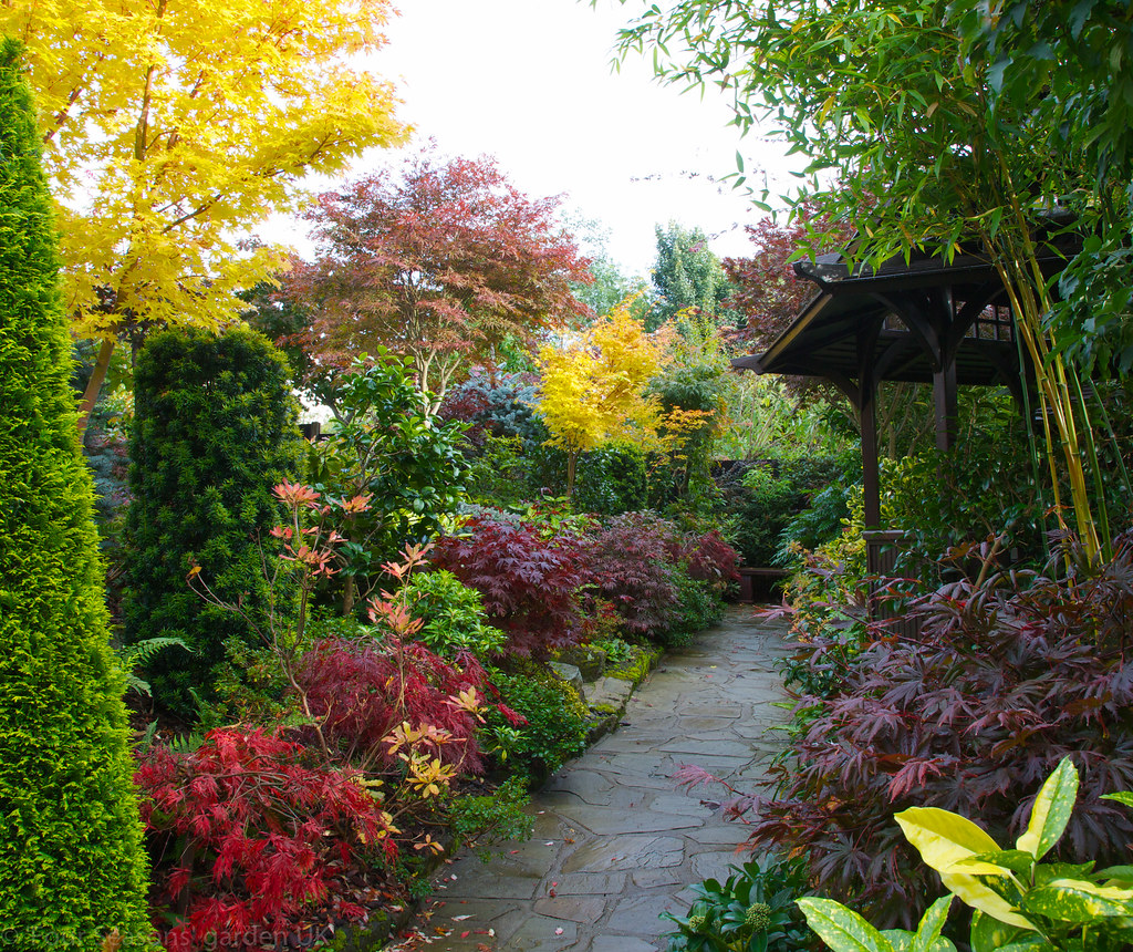 Path in the middle garden autumn four seasons garden for Gardening 4 all seasons