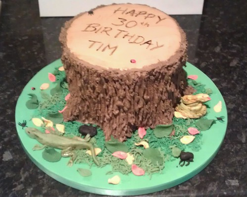 Tree Stump Cake Pan