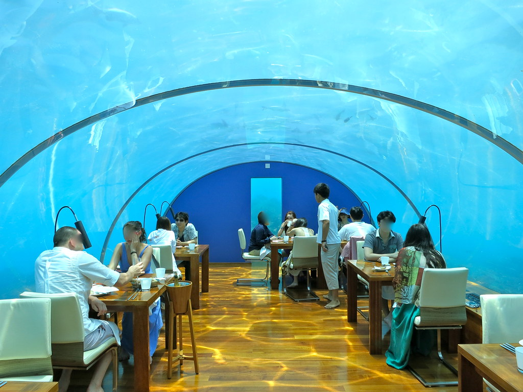 Rangali island maldives ithaa undersea restaurant for Ithaa restaurant maldives
