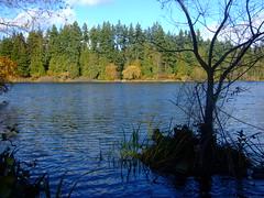 Lagoon, Stanley Park