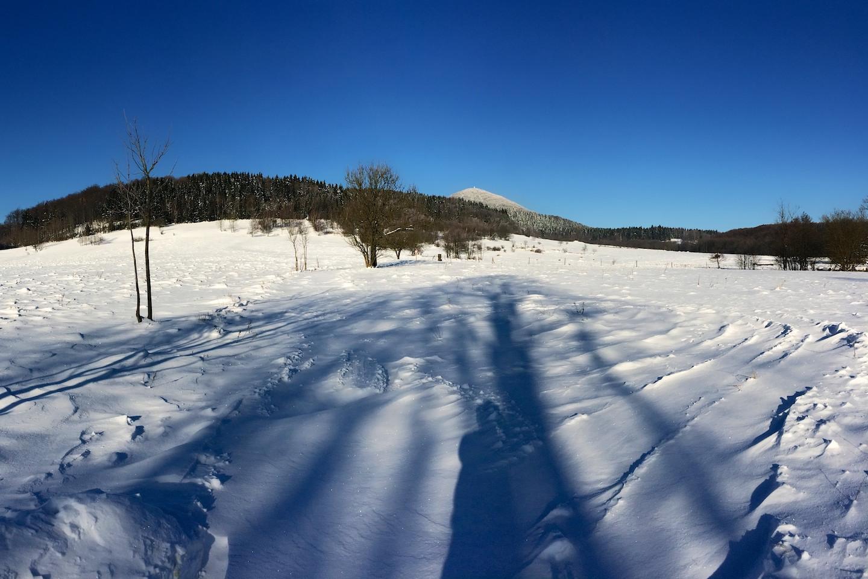 Start na pastvinách v Dolní Světlé. Ojíněný vrchol Luže je nepřehlédnutelný.
