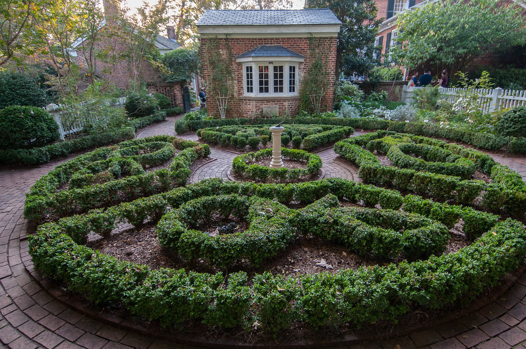 Founders garden boxwood parterre for Parterre 3d