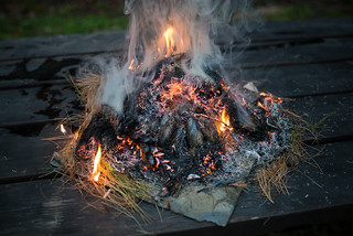 Pine Needles Burning | by goingslowly