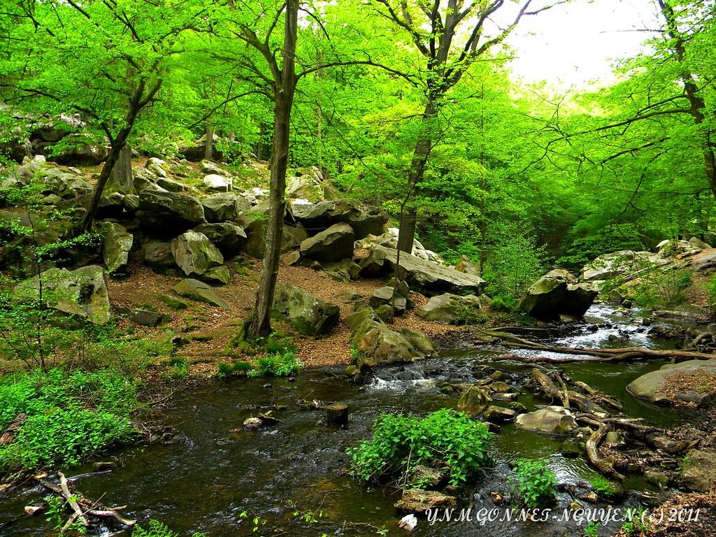 Chaos rocheux gorge cascade vall e des vaux de cernay ce for Parc naturel yvelines