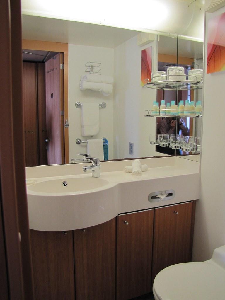 Celebrity summit aqua class bathroom log