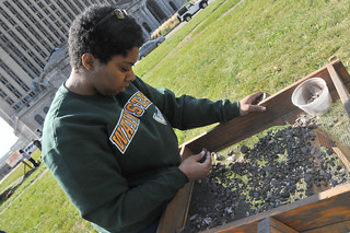 Roosevelt Park Archaeological Dig | by Wayne State University
