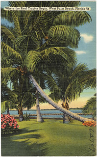 West Palm Beach Library Jobs