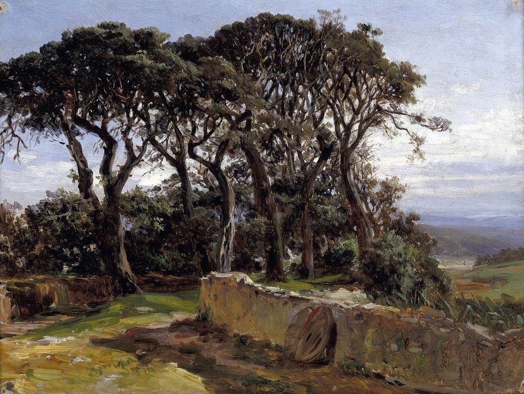 haes  carlos de  1829-1898