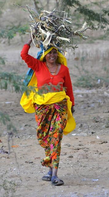 Rajasthani Village Woman  Explore Jasleenkaurs Photos -2505