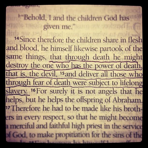 Hebrews 2:14-15 #breakfastofchampions | Chase Delperdang ...