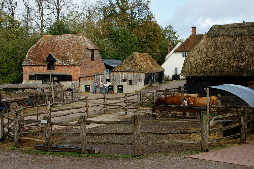 Manor Farm Botley Hampshire A Heritage Farm And