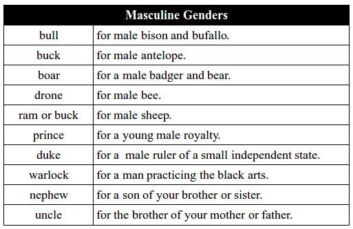 Gender Chart Of Animals: Masculine Gender Noun Chart A | Zabdiel Feliz Lebrun | Flickr,Chart