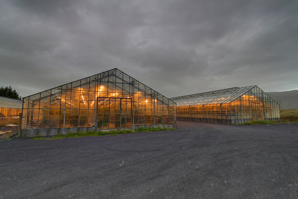 Greenhouses heated with Geothermal Energy, Iceland | Flickr