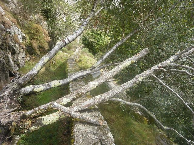Paso obstruído en el canal de la Ruta por el Cañón del Eume