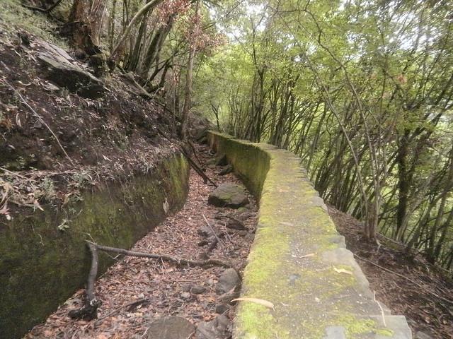 Canal de agua en la Ruta por el Cañón del Eume