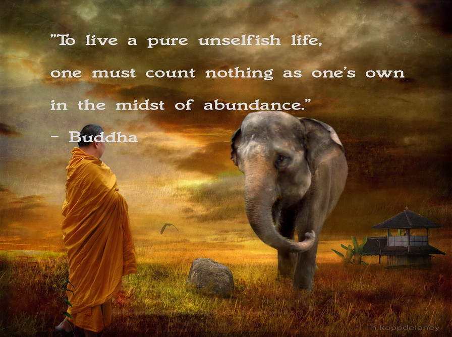 This Is The 62nd Of 108 Buddha Quotes