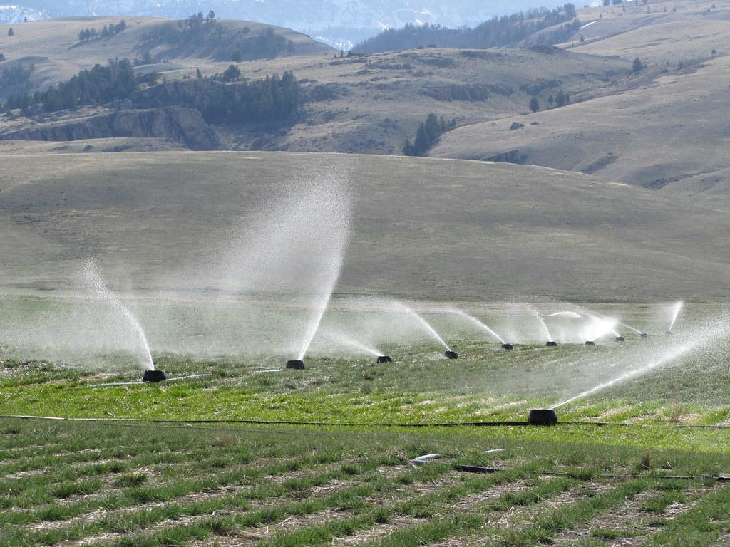 K Line Irrigation System Approximately 170 K Lines Were