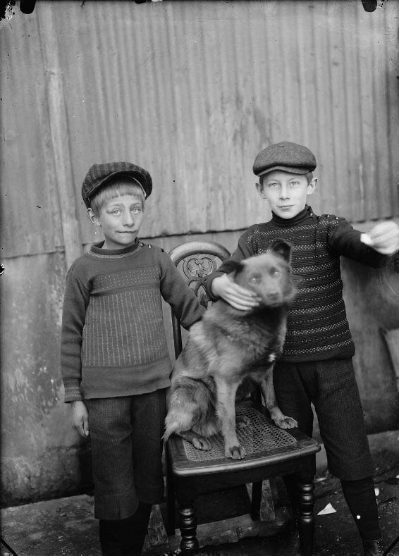 Tveir Drengir Og Hundur Two Boys And A Dog 1920 1930