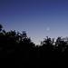 Earthshine and Venus