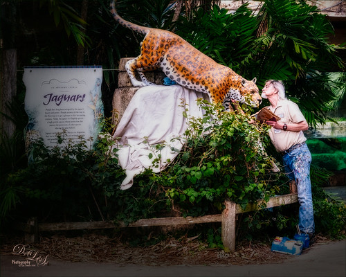 Sign Painter at Jacksonville Zoo in Florida
