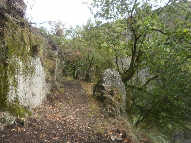 Desfiladero en la Ruta por el Cañón del Eume