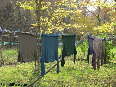 (24-12) Autumn colored laundry on the year round line | by Farmgirl Susan
